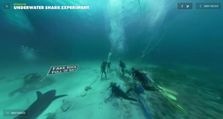 sharksharksharkaaaahhhh